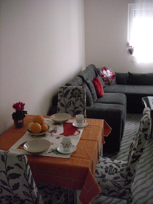 Podgorica Apartment - Image 1 - Podgorica - rentals