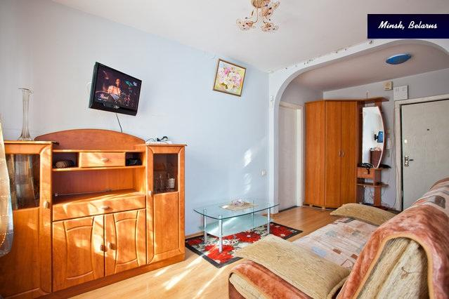 Living room with a pull-out couch - Home away from home! - Minsk - rentals