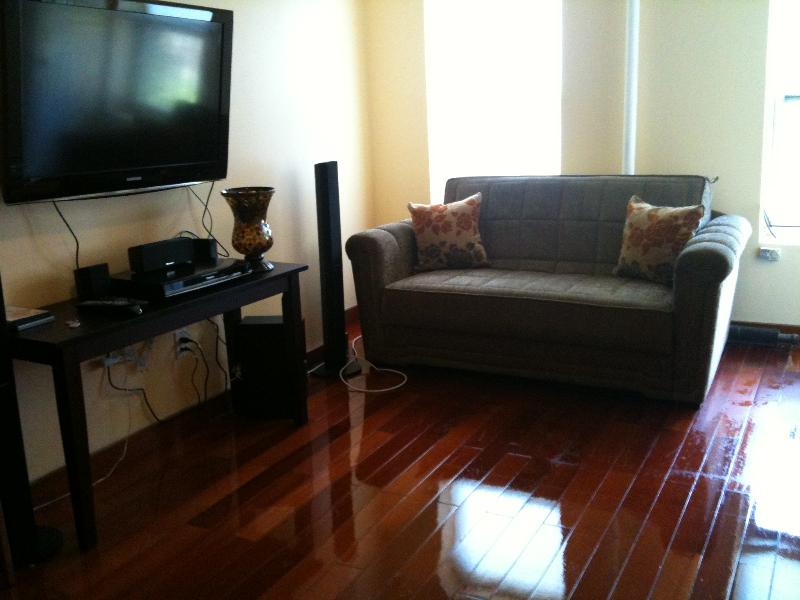 GREAT!! Stunning East Village Apt, - Image 1 - New York City - rentals