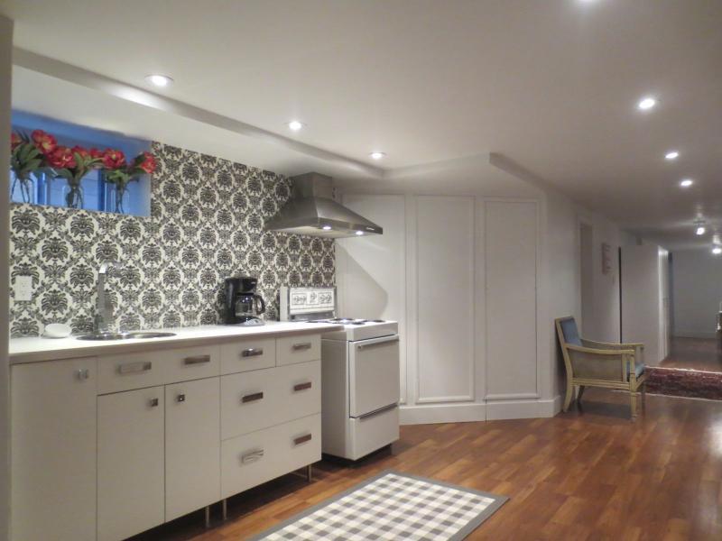 Pearl Suite - 1bdr + 1 bath, below ground level - Image 1 - Toronto - rentals