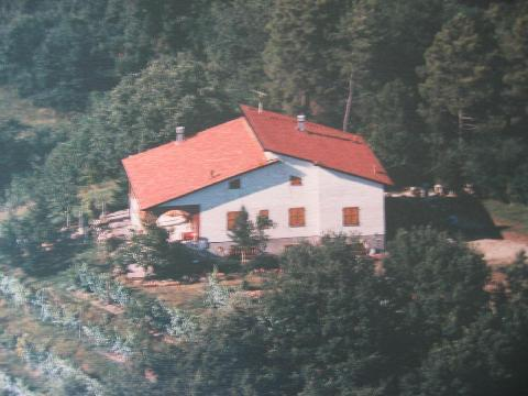 Aerial view of the house - Hilltop Bed and Breakfast in the Countryside of Tu - Aulla - rentals