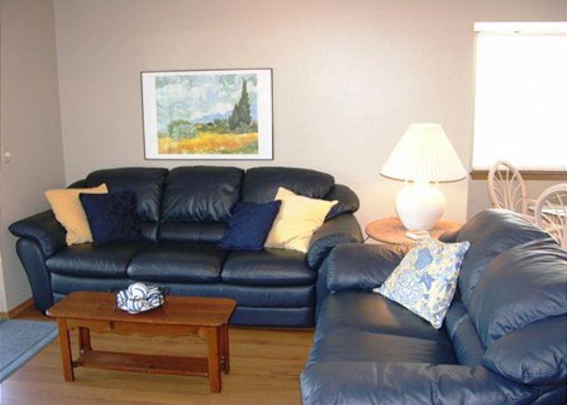 Living Area - BaySide Escape- 2 Bedroom, 2 Bath, Walk-In Level Condo near SDC - Branson - rentals
