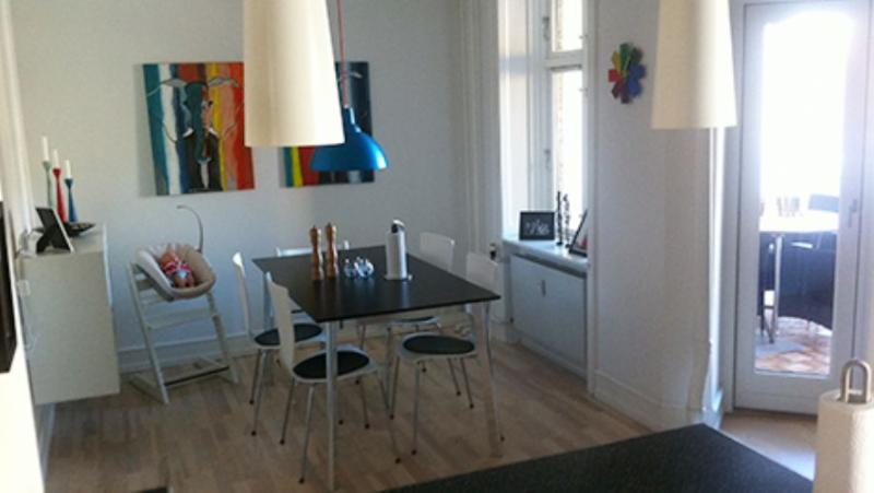 Ryesgade Apartment - Lovely large Copenhagen apartment near Triangle Square - Copenhagen - rentals