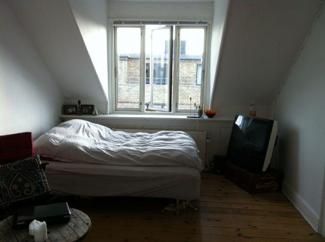 Sortedam Dossering Apartment - Copenhagen apartment with stunning views of the lakes - Copenhagen - rentals