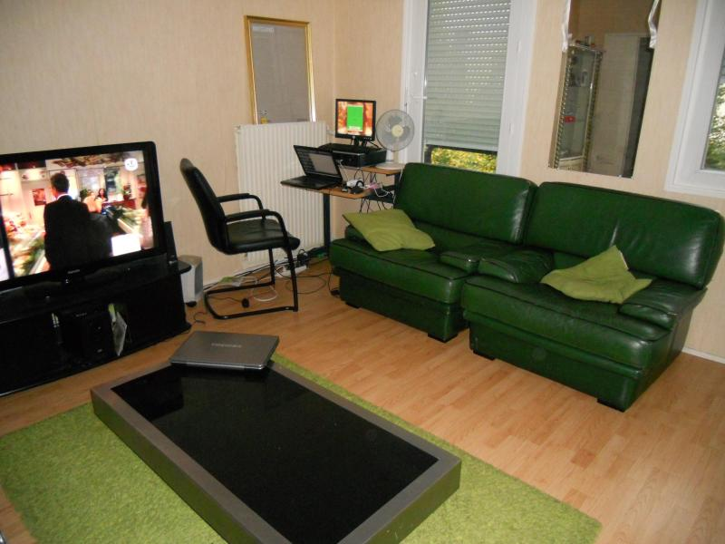 MOSILOR FIRST - Image 1 - Bucharest - rentals