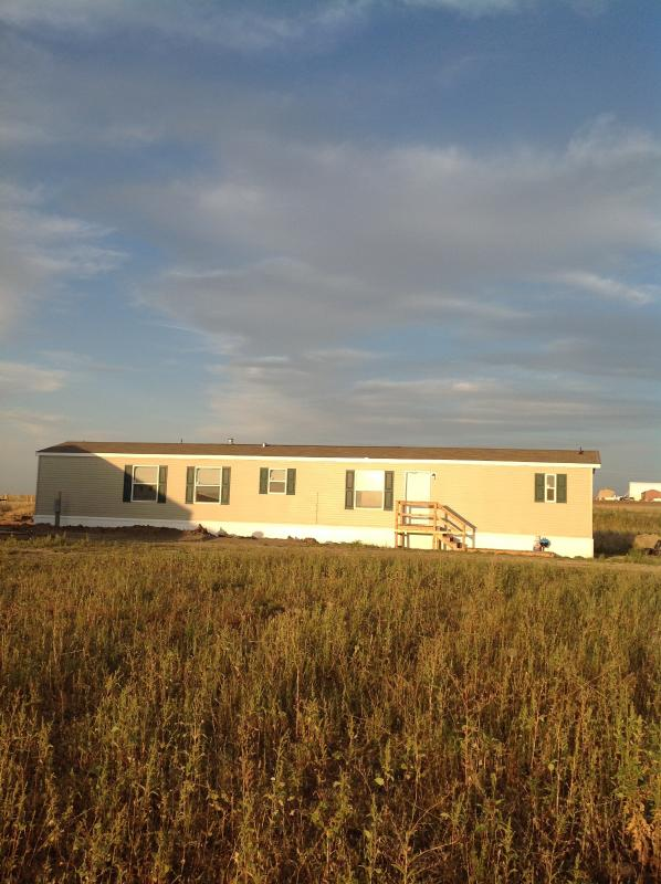 Front - New 5 bed 2 Bath House & Shop 40'x72 on 5 Acres - Arnegard - rentals