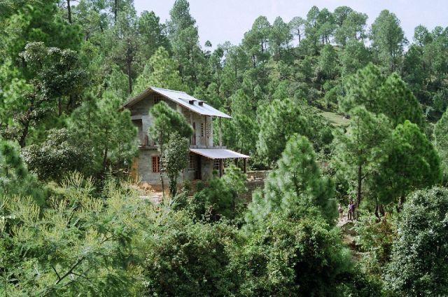 Frozen Woods Property Picture - Frozen Woods - Tranquil Getaway at Mukteshwar - Rudrapur - rentals
