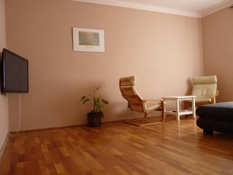 Island Fest Apartment - Image 1 - Budapest - rentals