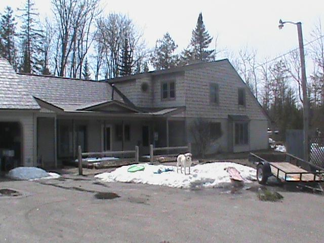 Grass River House - Chain of Lakes Beauty  -  Bellaire, Torch Lake - Bellaire - rentals