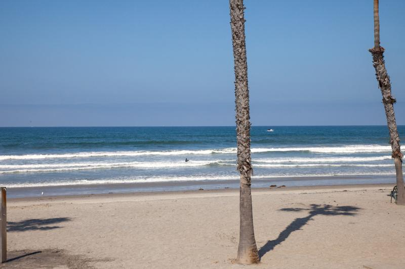 On the Beach - Pelican's Paradise - Oceanside - rentals