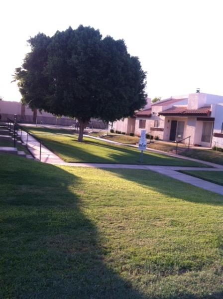 Courtyard - Home Away From Home - Yuma - rentals