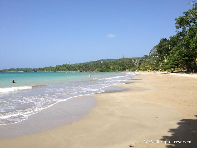Walk to the local beach in under 5 minutes - Fern Villa - Beach / WIFI / Cable TV - Boscobel - rentals