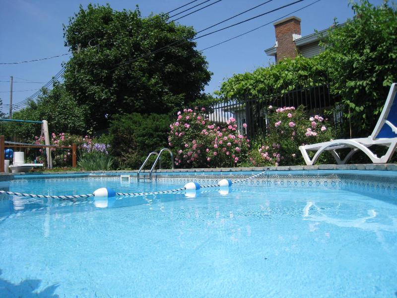 outdoor pool - Cosy queen bedroom - Guesthouse Chez Nathalie - Montreal - rentals