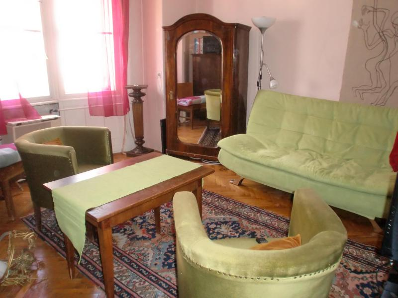 living area - Cosy apartment in Buda,close to Castle hill,Gellert Bath - Budapest - rentals