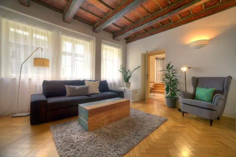 One-Bedroom Cozy Apartment - One-Bedroom Cozy Apartment - Prague - rentals
