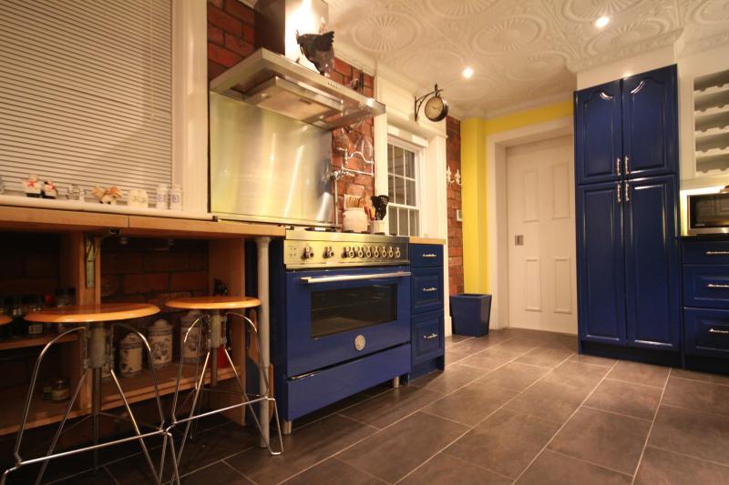 Kitchen designed and stocked by Cordon Bleu chef. - SPECTACULAR KITCHEN, PRIVATE TERRACE, sleeps 6, downtown Ottawa,!!! - Ottawa - rentals