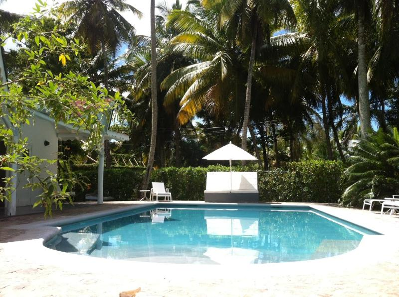Large renovated pool 12x6 m in grey cement - Large Pool 12x6 / Beach at 200m / Unlimited WiFi - Las Terrenas - rentals