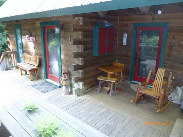 Canoe Cabin * Hot Tub * In Law Suite * - Image 1 - Ellijay - rentals