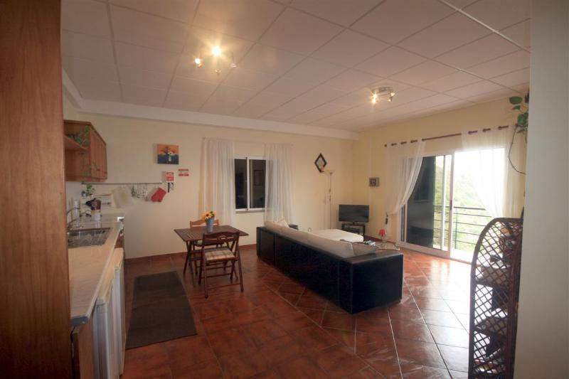 View from the garage into the lounge showing the ocean view flatscreen TV etc - Apartment Miradouro - Calheta - Calheta - rentals