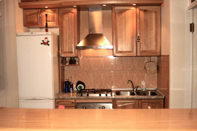 Apartment for rent in the center of Yerevan - Image 1 - Yerevan - rentals