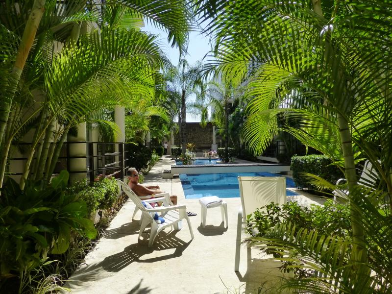 Mornings by the courtyard, just below the condo terrace - Casa Limonada in Playa del Carmen - Your Paradise! - Playa del Carmen - rentals