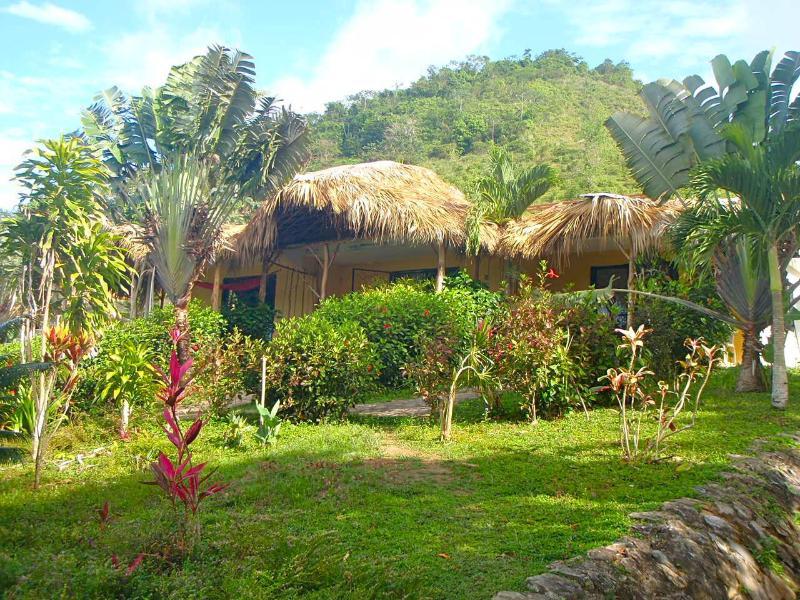 Private Studio Apartment within Jurassic Park - Image 1 - Las Terrenas - rentals
