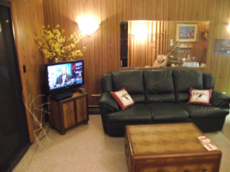 Sofa-bed - Highaways - Beech Mountain - rentals
