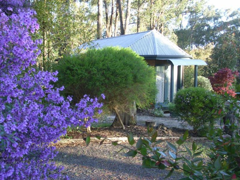 Bush Blossom - Ponderosa Bed & Breakfast - Boolarra - rentals