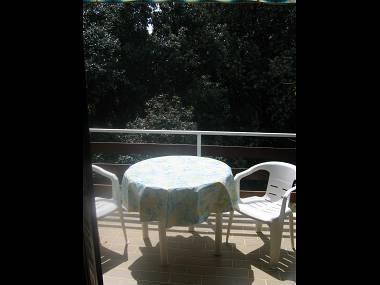 Cleopatra(2+2): terrace - 7875  Cleopatra(2+2) - Biograd - Biograd - rentals
