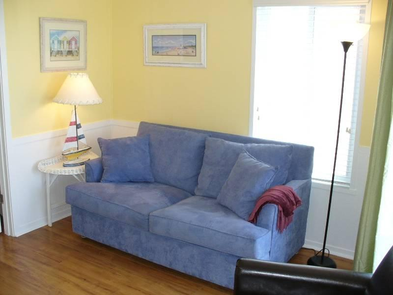 A Place At The Beach #344 - Image 1 - Atlantic Beach - rentals