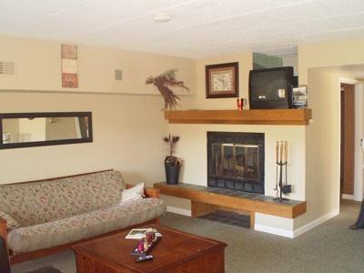 Living Room - Big Boulder Lake Front Condo I-245 Midlake Dr. - Lake Harmony - rentals