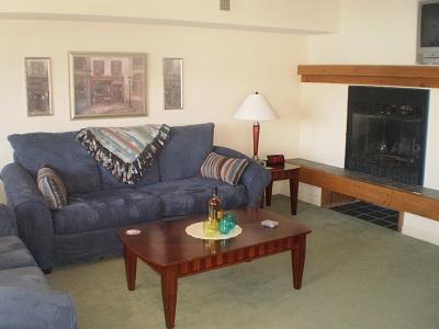 Living Room - Big Boulder Lake Front Condo B-144 Midlake Dr. - Lake Harmony - rentals