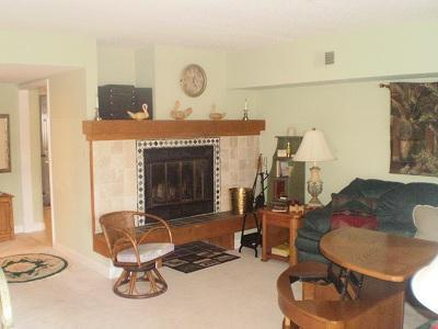 Living Room - Big Boulder Lake Front Condo H-230 Midlake Dr. - Lake Harmony - rentals