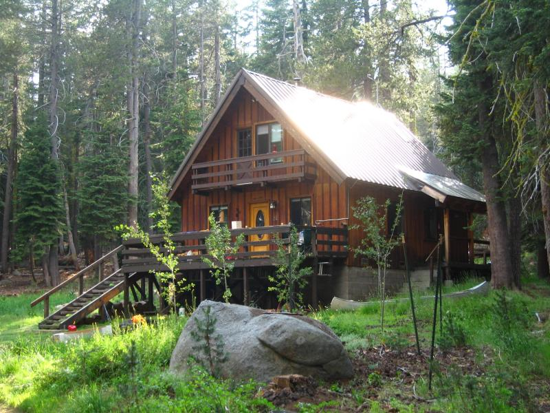 Tyler's Cabin - High Sierras Mountain Cabin on 8 Private Acres! - Bear Valley - rentals