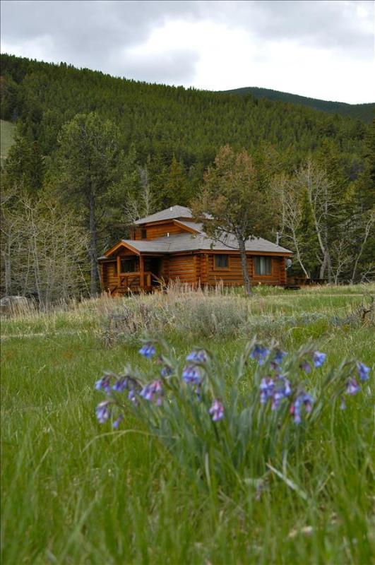 Good Medicine - Image 1 - Red Lodge - rentals