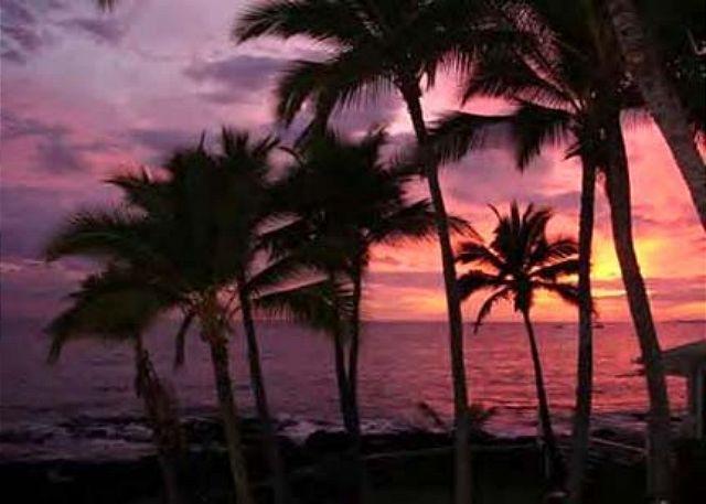 Kona Reef D33 Ocean Front At It's Best! - Image 1 - Kailua-Kona - rentals