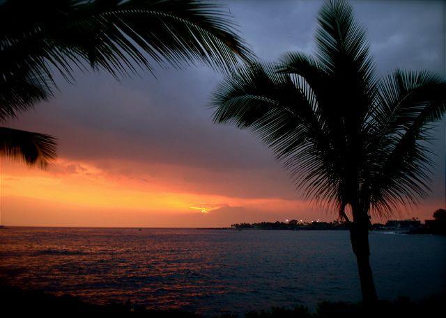 Sea Village 3202 - Image 1 - Kailua-Kona - rentals