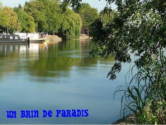 PARIS, nice apartement F2, 474 ft², 15 mn. Center - Image 1 - Joinville-le-Pont - rentals