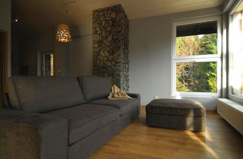 Living area - Apartament Prezydencki - Sroda Wielkopolska - rentals