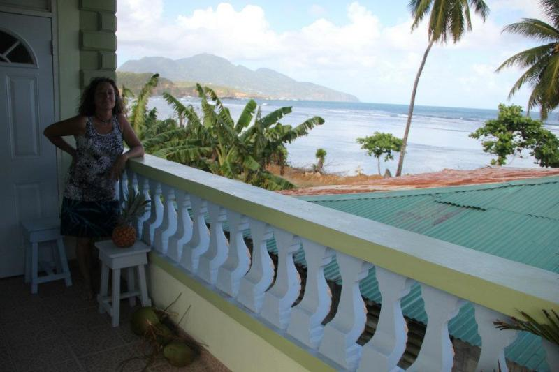 view from the villa - The Nixon's Bayside Mangrove Inn - Calibishie - rentals