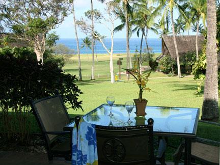 View of Ocean - Romantic Studio - Maunaloa - rentals