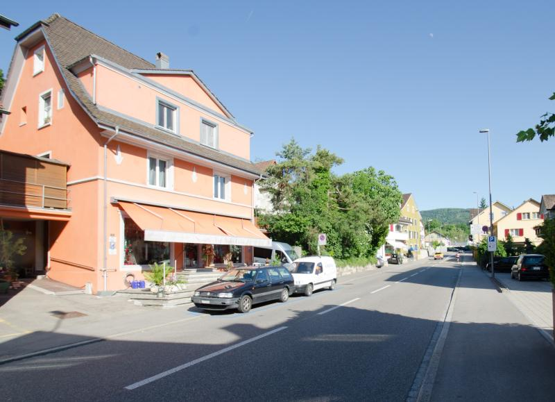Home sweet home flair perfect for travelers , students & peoples who work in this area - Chez Svanette Bio B&B with 7 cozy living-bed rooms - Dornach - rentals