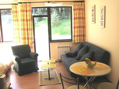 Lounge area & balcony - Modern studio apartment - Borovets - rentals