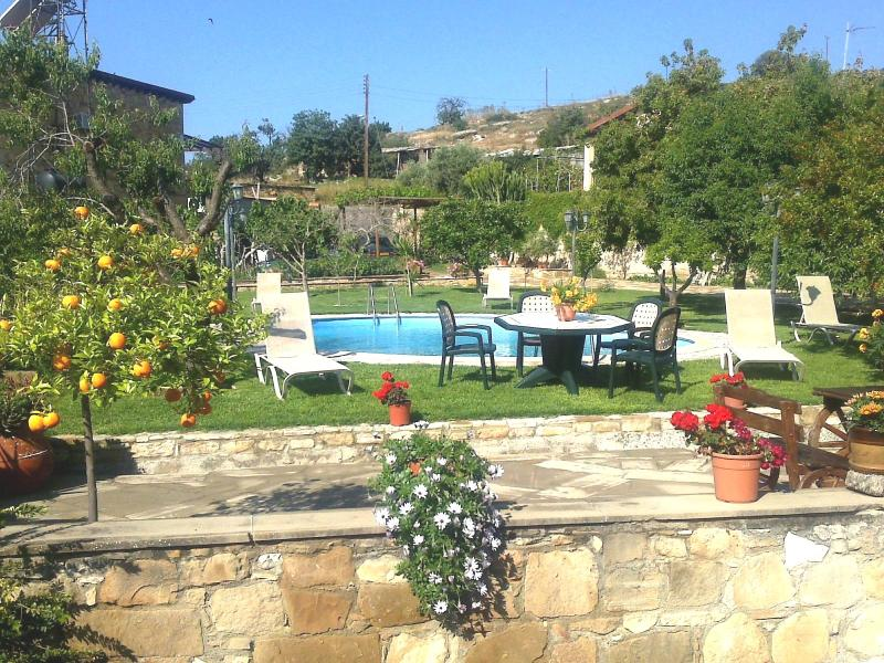 Three bedroom villa with private pool and garden - Image 1 - Larnaca District - rentals