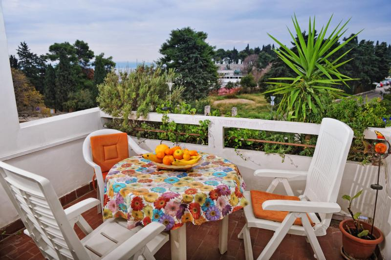 "South balcony of apartmet with wiew on marine and sea and very nice park ""Sustipan"" - Splithit!!!The best location! - Split - rentals"