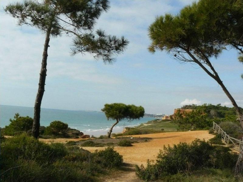 Nice T0 apt 300 m Beach Falesia (Albufeira, Alfamar) - Image 1 - Albufeira - rentals