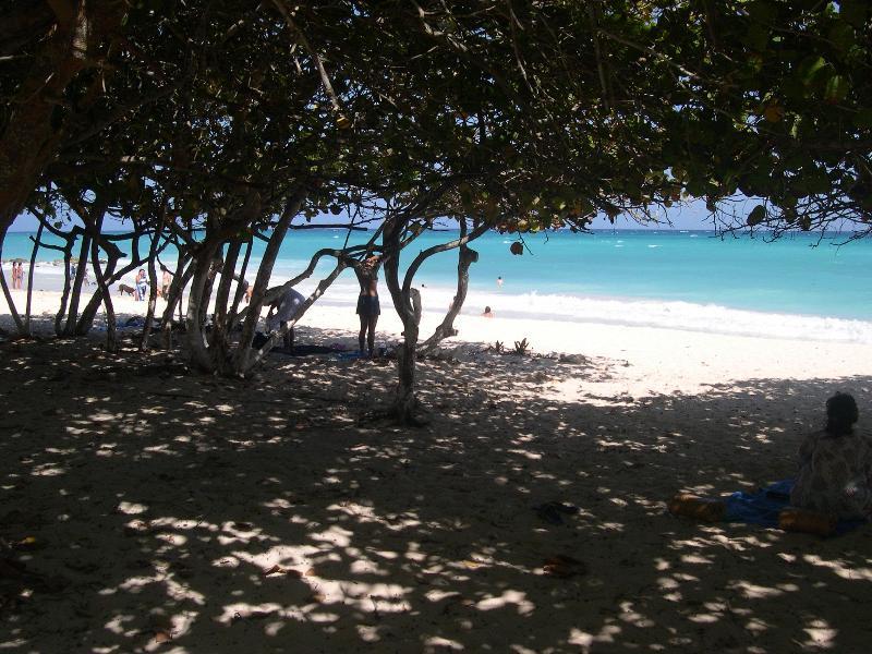 Villa dasi - Image 1 - Playa del Carmen - rentals