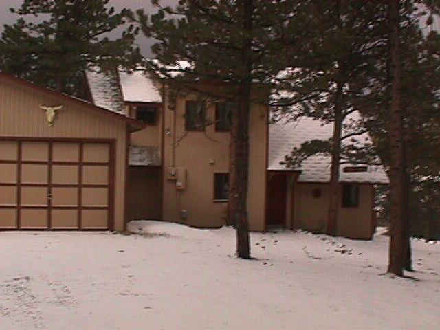 Front Entrance View - Mountain Getaway Near 11 Mile Reservoir - Colorado Springs - rentals