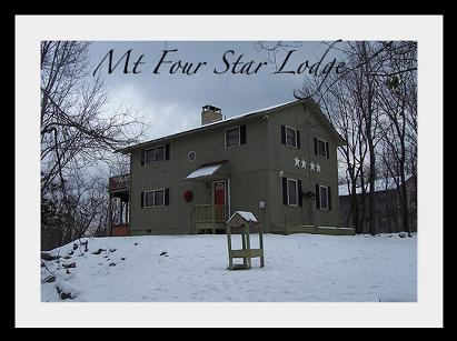 Mt Four Star Lodge - Mt. Four Star Lodge - Lake Harmony - rentals