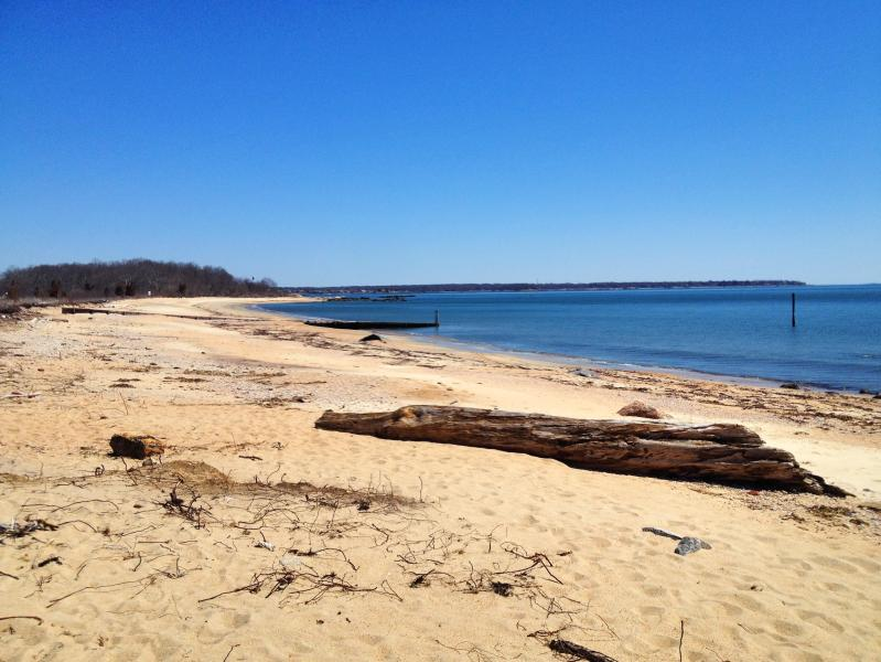 Private Beach steps away from house. - Beachfront Home w/ Private Beach & over 200 Acres - Old Lyme - rentals